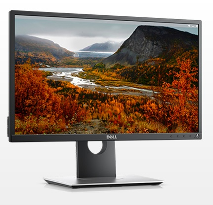"22"" Dell Professional P2217H"